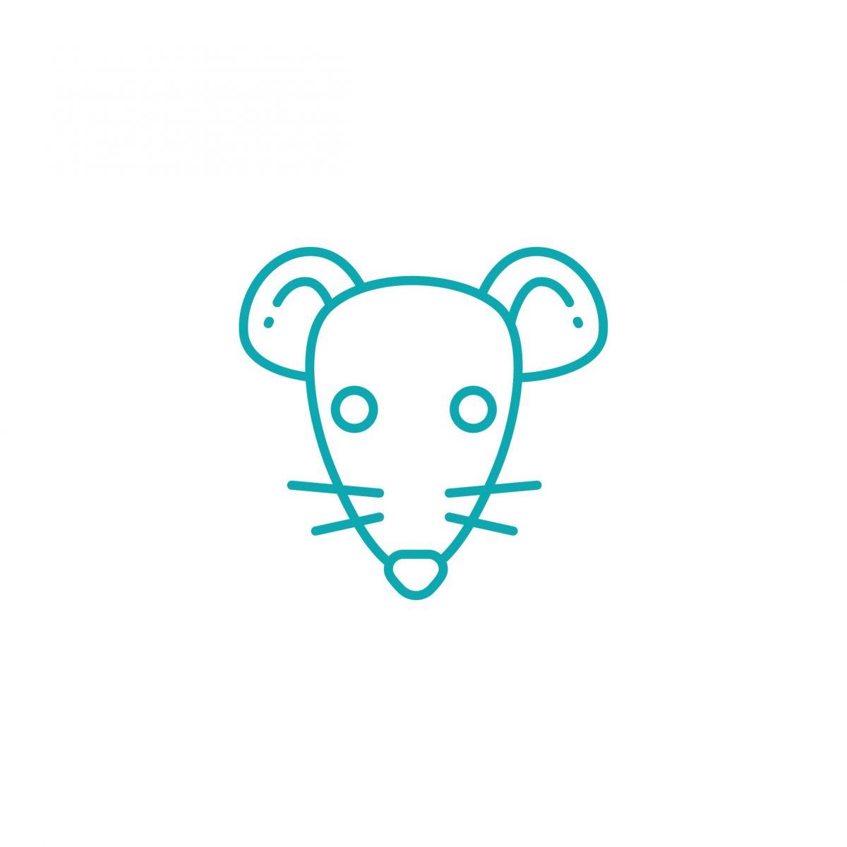 לוכד עכברושים – מדוע חשוב להזמין איש מקצוע בזמן
